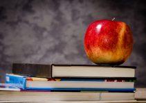 Äpple på skolböcker